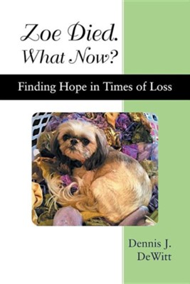 Zoe Died. What Now?: Finding Hope in Times of Loss  -     By: Dennis J. DeWitt