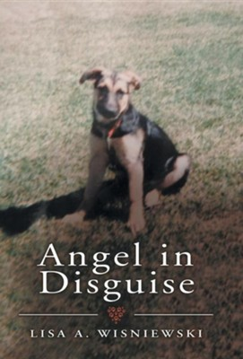 Angel in Disguise  -     By: Lisa A. Wisniewski