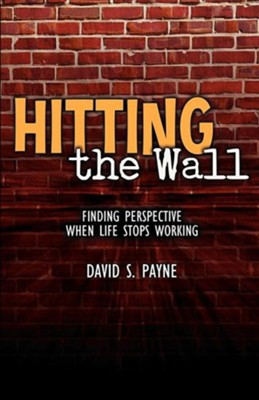 Hitting the Wall  -     By: David S. Payne