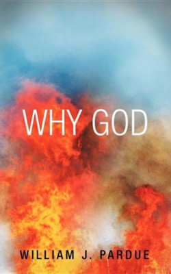 Why God  -     By: William J. Pardue