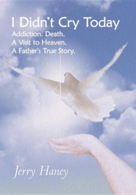I Didn't Cry Today: Addiction. Death. a Visit to Heaven. a Father's True Story  -     By: Jerry Haney