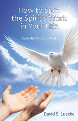 How to Spot the Spirit's Work in Your Life: Seek His Gifts and Fruit  -     By: David S. Luecke