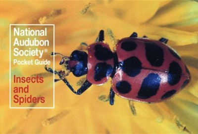 National Audubon Society Pocket Guide to Familiar Insects and Spiders  -     By: John Farrand Jr.