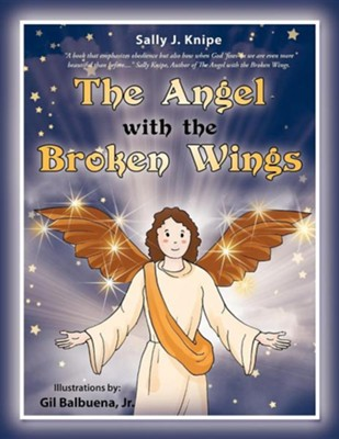 The Angel with the Broken Wings  -     By: Sally J. Knipe