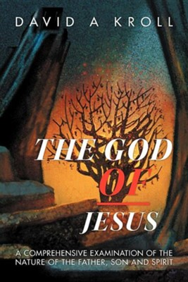 The God of Jesus: A Comprehensive Examination of the Nature of the Father, Son and Spirit  -     By: David A. Kroll