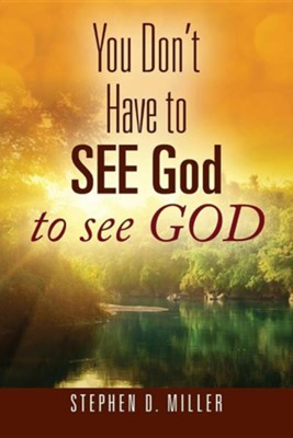 You Don't Have to See God to See God  -     By: Stephen D. Miller