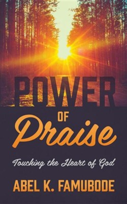 Power of Praise: Touching the Heart of God  -     By: Abel K. Famubode