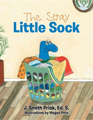 The Stray Little Sock  -     By: J. Smith Prisk