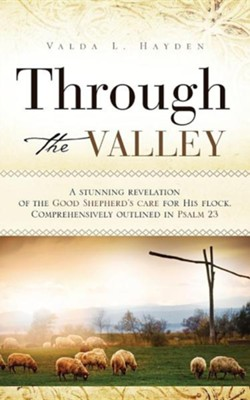 Through the Valley  -     By: Valda Hayden