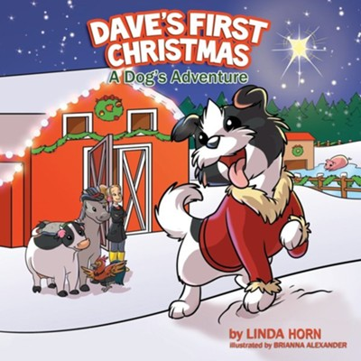 Dave's First Christmas  -     By: Linda Konecny