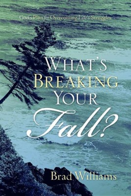 What's Breaking Your Fall?  -     By: Brad Williams