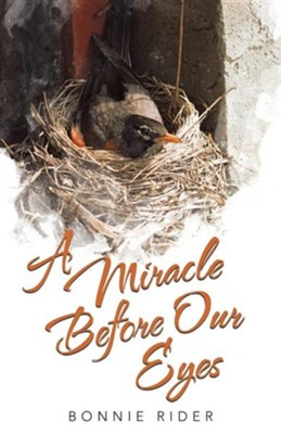 A Miracle Before Our Eyes  -     By: Bonnie Rider