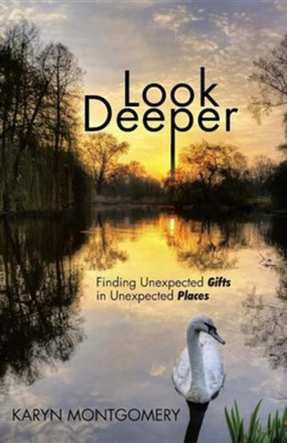 Look Deeper: Finding Unexpected Gifts in Unexpected Places  -     By: Karyn Montgomery