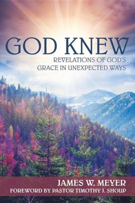 God Knew: Revelations of God's Grace in Unexpected Ways  -     By: James W. Meyer