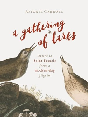 A Gathering of Larks: Letters to Saint Francis from a Modern-Day Pilgrim  -     By: Abigail Carroll