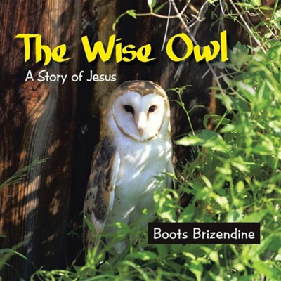 The Wise Owl: A Story of Jesus  -     By: Boots Brizendine