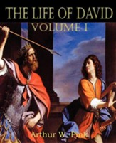 The Life of David Volume I - Slightly Imperfect