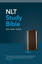 NLT Study Bible, TuTone, LeatherLike, Brown