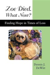 Zoe Died. What Now?: Finding Hope in Times of Loss