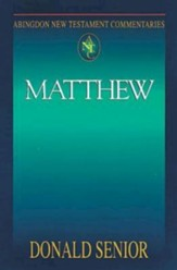 Matthew: Abington New Testament Commentaries [ANTC]