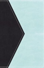 KJV UltraSlim Reference Bible--soft leather-look, sea  blue/sea foam (indexed)