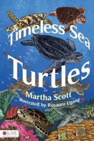 Timeless Sea Turtles