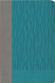 NIV Faithlife Study Bible: Intriguing Insights to Inform Your Faith--soft leather-look, gray/turquoise (indexed)