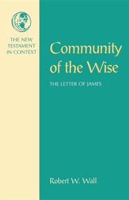 Community of the Wise, The Letter of James, The New Testament in Context