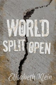 World Split Open  -     By: Elisabeth Klein