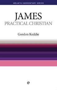 James: Practice Makes Perfect (Welwyn Commentary Series)
