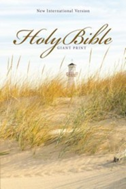 NIV Giant-Print Holy Bible, softcover  -