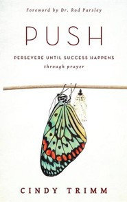Push persevere until success happens through prayer ebook cindy hardcover book fandeluxe Image collections