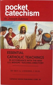 Pocket Catechism - 10 pack   -     By: A. Lodders