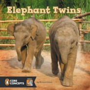 Elephant Twins  -     By: Richard Sobol