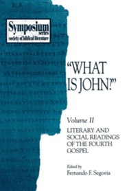 What Is John?: Volume II, Literary and Social Readings of the Fourth Gospel