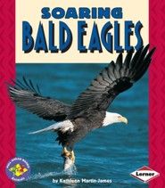 Soaring Bald Eagles  -     By: Kathleen Martin-James