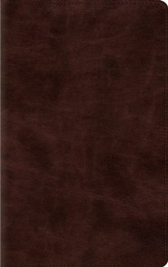 ESV Thinline Bible (TruTone, Espresso), Imitation Leather