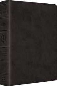 ESV Reader's Bible (TruTone, Black), Imitation Leather - Imperfectly Imprinted Bibles  -