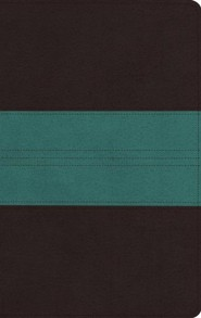 ESV Large Print Personal Size Bible (TruTone, Dark Brown/Teal, Trail Design), soft imitation leather