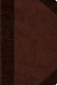 Imitation Leather Brown two-tone