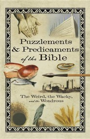 Puzzlements & Predicaments of the Bible: The Weird, the Wacky, and the Wondrous  -
