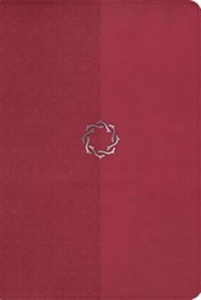 HCSB Essential Teen Study Bible, Rose LeatherTouch