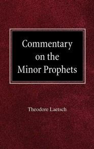 Commentary on the Minor Prophets  -     By: Theodore Laetsch