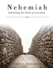 Nehemiah - Rebuilding the Walls of Jerusalem  -     By: Tammy J. Richardson