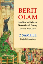 2 Samuel: Studies in Hebrew Narrative and Poetry   -     By: Craig E. Morrison