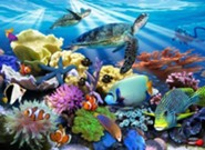 Ocean Turtles, 200 Piece Puzzle