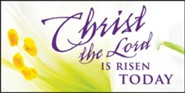 Christ the Lord Easter Lilies Offering Envelope 2015 (Package of 50)