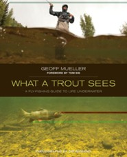 What A Trout Sees: A Fly Fishing Guide to Life Underwater