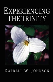Experiencing the Trinity  -     By: Darrell W. Johnson
