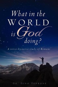 What in the World Is God Doing?  -     By: Dr. Dino Pedrone